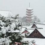 宮島雪景色