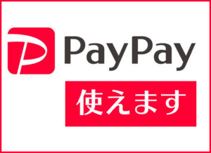 paypay-you-can-use-1